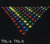LED net light LED INTERNATIONAL GROUP LTD